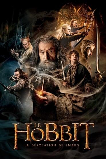 Le Hobbit : La Désolation de Smaug Film Streaming