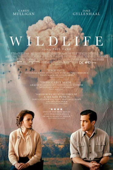 Wildlife - Une saison ardente Film Streaming