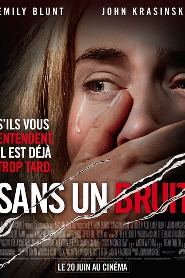 Sans un bruit Film Streaming