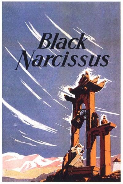 Siyah Nergiz