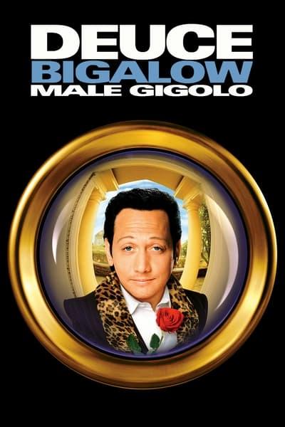 Erkek Jigolo