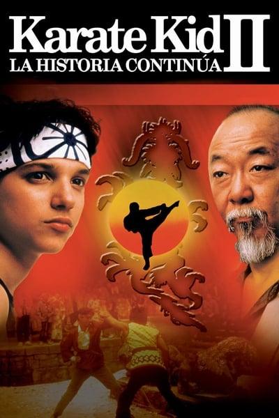 Karate Kid 2 II, la historia continúa
