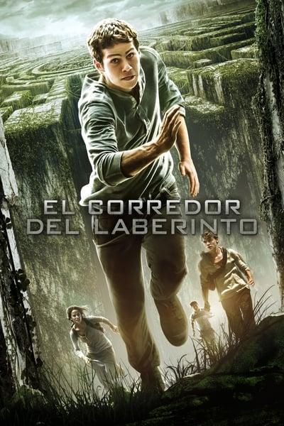 El corredor del laberinto / Maze Runner – Correr o Morir (2014)