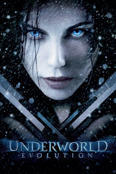 Underworld: Evolution 2006 BRRip 480p 300MB Dual Audio Hindi