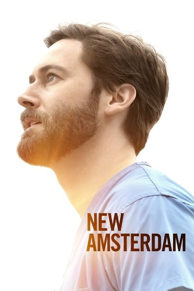 New Amsterdam TV Show Poster