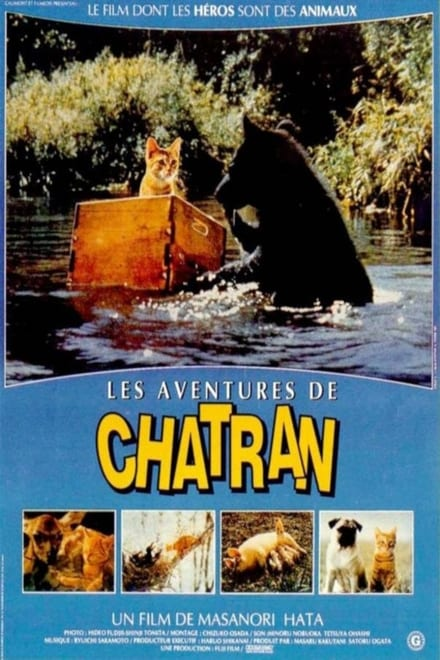 Les aventures de Chatran streaming VF