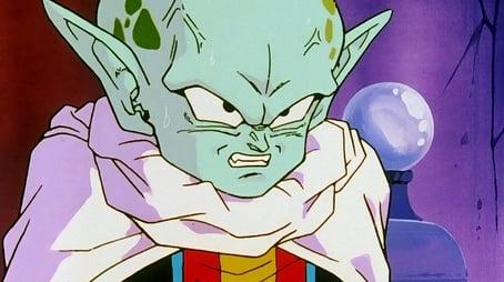 Piccolo - Freund oder Feind