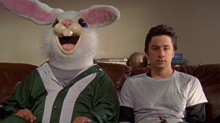 Mein Kaninchen