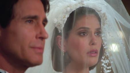 Die Hochzeit des Jahres