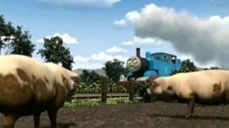 Thomas & The Pigs