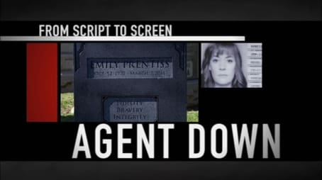 From Script to Screen Agent Down