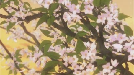 Full Blossom in the Sky