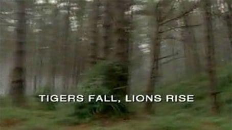 Der gefallene Tiger