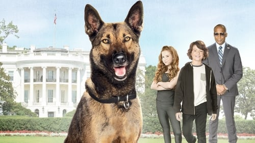 Max 2: White House Hero (2017) Watch Full Movie Streaming Online