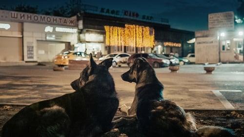 Space dogs (2019) Streaming Vf en Francais