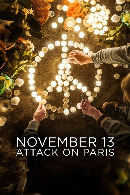 Cover of the Miniseries of November 13: Attack on Paris