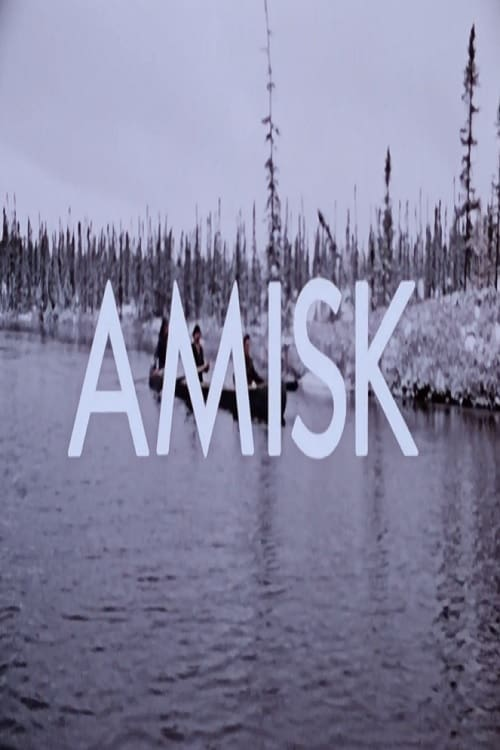 Amisk