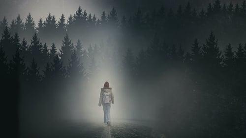 La ragazza nella nebbia (2017) Assistir Cinema Online