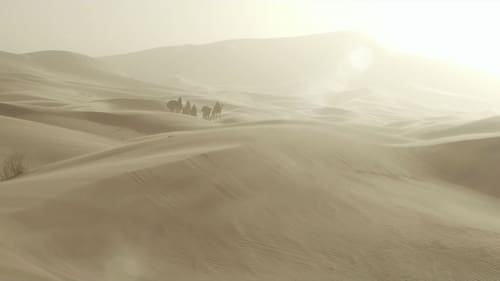 Queen of the Desert (2016) Watch Full Movie Streaming Online