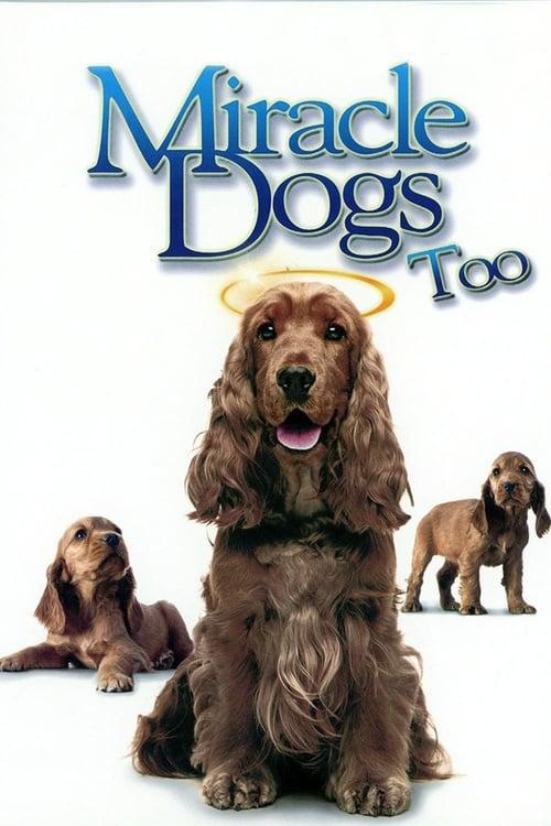 Zázračné psíky 2