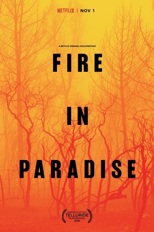 watch Fire in Paradise full movie online stream free HD