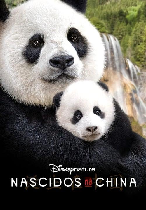Born in China (2016) PelículA CompletA 1080p en LATINO espanol Latino
