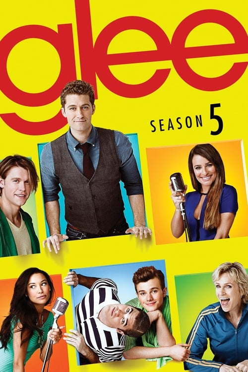 Cover of the Season 5 of Glee
