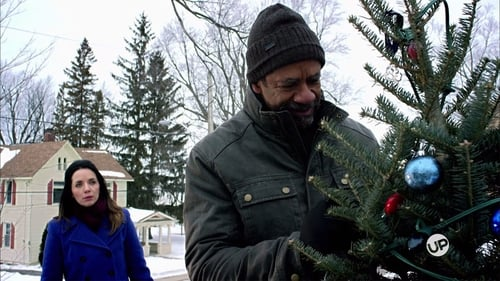 The Rooftop Christmas Tree (2016) Watch Full Movie Streaming Online