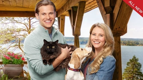 Like Cats & Dogs (2017) Watch Full Movie Streaming Online