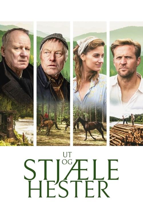 Poster för Ut och stjäla hästar - Banner