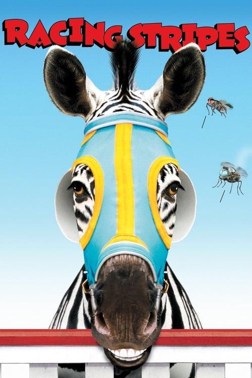 Veľký sen malej zebry