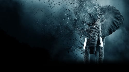 The Ivory Game (2016) Watch Full Movie Streaming Online