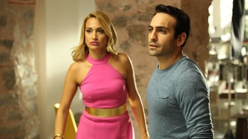 Sister In Law (2016) Watch Full Movie Streaming Online