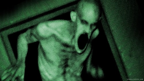 Grave Encounters 2 (2012) Watch Full Movie Streaming Online