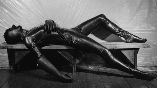 Mapplethorpe: Look at the Pictures (2016) Watch Full Movie Streaming Online