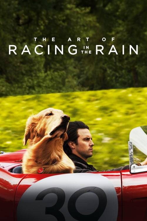 The Art of Racing in the Rain (2019) Teljes Film Magyarul Online HD