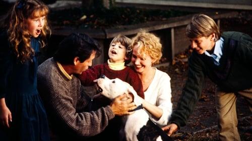 Homeward Bound: The Incredible Journey (1993) Assistir Cinema Online