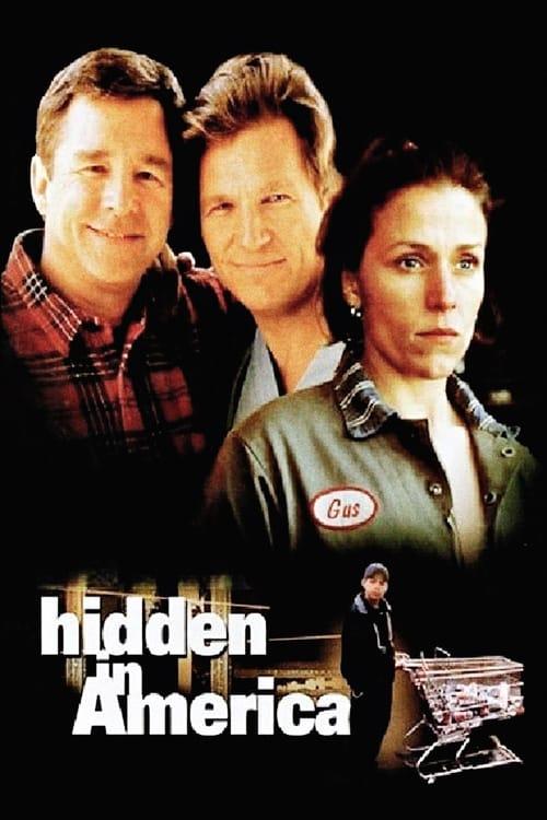 Hidden in America (1996) Poster