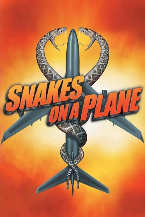 Hady v lietadle