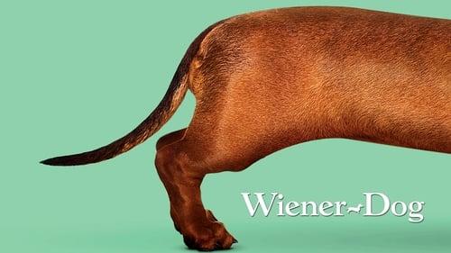 Wiener-Dog (2016) Watch Full Movie Streaming Online