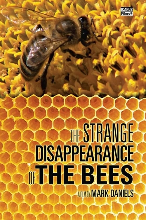 The Strange Disappearance of the Bees