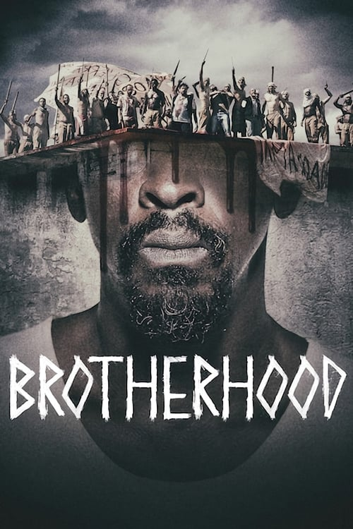 Cover of the Season 1 of Brotherhood