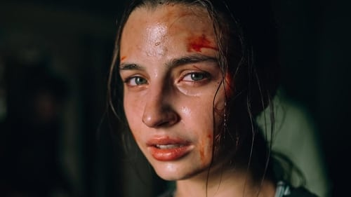 Nobody Sleeps in the Woods Tonight (2020) Regarder film gratuit en francais film complet streming gratuits full series