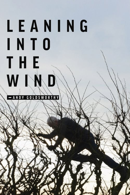watch Leaning Into the Wind: Andy Goldsworthy full movie online stream free HD