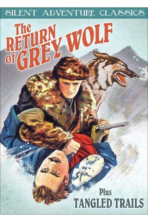 The Return of Grey Wolf