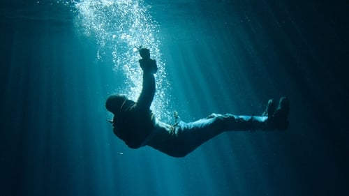 The Flood (2019) Watch Full Movie Streaming Online