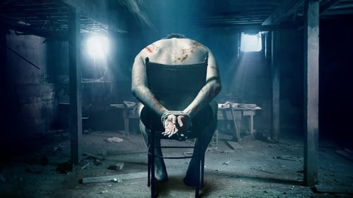 The Basement (2018) Watch Full Movie Streaming Online