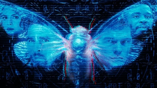 Dark Web: Cicada 3301 (2021) Regarder film gratuit en francais film complet streming gratuits full series