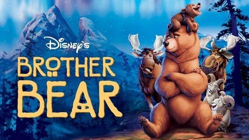 Frère des ours (2003) Regarder film gratuit en francais film complet streming gratuits full series