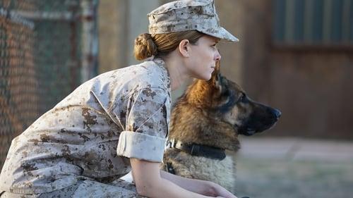 Megan Leavey (2017) Watch Full Movie Streaming Online